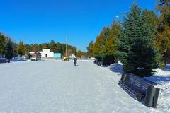 Snö-täckt gränd av Park som namnges efter Yu A gagarin royaltyfri fotografi