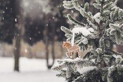 Snö-täckt gran-träd med pepparkakakakan Royaltyfria Bilder