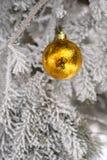 Snö täckt granträd med leksakbollen Royaltyfri Foto