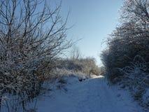 Snö-täckt grusväg i bergen Den härliga vintern landscape Arkivfoto