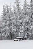 Snö täckt picknickbänkuppsättning med tabellen Royaltyfria Bilder