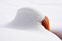 Snö-täckt pumpa i solsken Arkivfoto