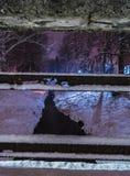 Snö-täckt räcke och flod Royaltyfria Bilder