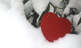 Snö-täckt röd hjärta Royaltyfri Fotografi