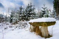 Snö-täckt stena bänken i vinter royaltyfria bilder