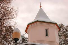 Snö-täckt tak under den gråa himlen royaltyfri fotografi