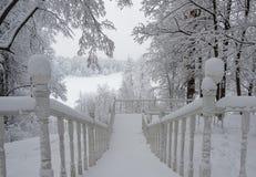 Snö-täckt trappuppgång i vinterskogen royaltyfri bild