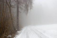Snö-täckt väg i dimmig skog för vinter arkivbild