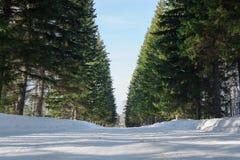 Snö täckt väg i vinterlandskap Arkivfoto