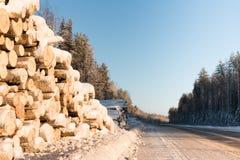Snö-täckt väg på en vinterdag Arkivfoto