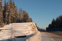 Snö-täckt väg på en vinterdag Fotografering för Bildbyråer