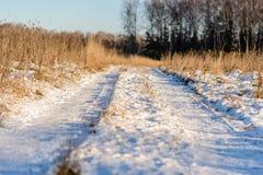 Snö-täckt väg som går tillbaka in i avståndet Arkivfoton