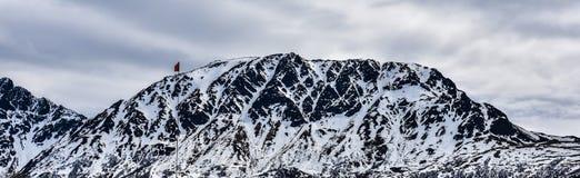 Snö täckte berg, Alaska royaltyfria bilder