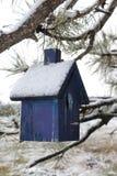 Snö täckte det blåa fågelhuset i ett sörjaträd royaltyfri fotografi
