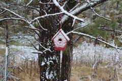 Snö täckte det röda fågelhuset i ett sörjaträd Arkivfoton