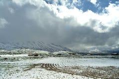 Snö-täckte fält för bonde` s på lutningarna av Qurnat som Sawda i Libanon royaltyfri bild
