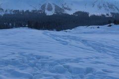 Snö täckte fält i Gulmarg, Kashmir Arkivfoto