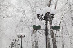 Snö-täckte gatalampor och träd på en stadsboulevard Royaltyfri Fotografi