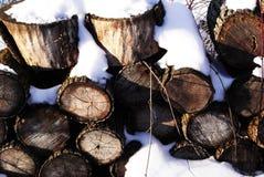 Snö-täckte journaler Fotografering för Bildbyråer