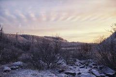 Snö-täckte kullar och skogen på solnedgången Royaltyfri Bild
