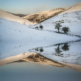 Snö täckte landskapet för vinterbygdsoluppgång reflekterat i s Royaltyfri Foto