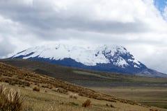 Snö täckte maximumet av den Antisana vulkan i Antisana den ekologiska reserven Arkivbilder
