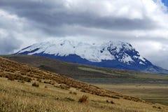 Snö täckte maximumet av den Antisana vulkan i Antisana den ekologiska reserven Arkivfoto