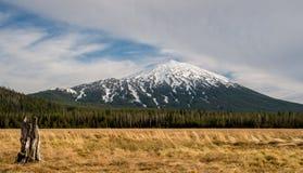Snö täckte monteringsungkarlen i det Oregon kaskadområdet arkivbild