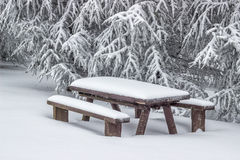 Snö täckte picknickbänkuppsättningen med tabell 2 Royaltyfria Bilder