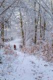 Snö täckte skogslingan med en träspång l arkivbild
