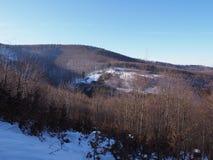 Snö täckte skogsmark på landskapet för Beskid bergområde i Jaworze nära stad av Bielsko-Biala i Polen Royaltyfria Bilder