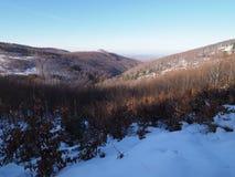 Snö täckte skogsmark på landskapet för Beskid bergområde i Jaworze nära stad av Bielsko-Biala i Polen Royaltyfri Foto