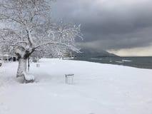 Snö vid havet Royaltyfri Fotografi