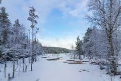 Snöa den dolda skogen med den djupfrysta sjön, Hedmark Norge Royaltyfri Fotografi