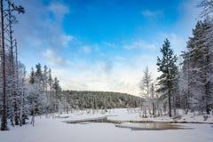 Snöa den dolda skogen och den djupfrysta sjön, Hedmark Norge Royaltyfria Foton