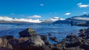 Snöa dolda fjordar vid havet i Island royaltyfri foto