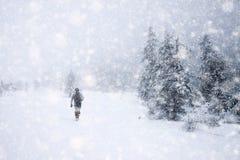 snöa dolda granträd i tungt snöfall - julbakgrund arkivfoton
