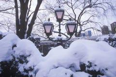 Snöa dolda lyktstolpar med den nya insnöade Central Park, Manhattan, New York City, NY Royaltyfri Bild