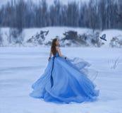 Snöa drottningen i en lyxig frodig klänning med ett långt drev En flicka går på en djupfryst sjö som täckas med snö En post- fåge royaltyfria foton