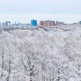 Snöa ekar i trän och staden i vinterdag Fotografering för Bildbyråer