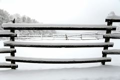 Snöa fylld tid för hästfållavintern utan hästar Grund dep Royaltyfria Bilder