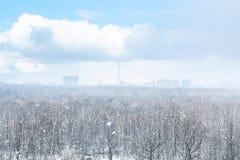 Snöa häftiga snöstormen över stad och skog i vår Arkivbild