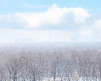Snöa häftiga snöstormen över stad och trän i vår Arkivfoton