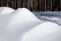 Snöa högen i skogen i en ljus vintereftermiddag Arkivbilder