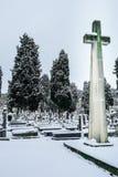Snöa i kyrkogårdSten Jose Burgos fotografering för bildbyråer