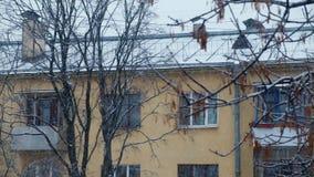 Snöa i staden, flervånings- byggnad och trädcloseupen, vinter stock video