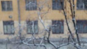 Snöa i suddig stadsbakgrund arkivfilmer