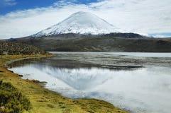 Snöa korkade höga berg reflekterade i sjön Chungara Arkivbilder