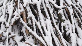 Snöa nedgångar i ultrarapid på bakgrund av högen av trädfilialer och ris stock video