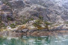 Snöa nedgången på den Santa Ines glaciären i kanalen av Magellan Royaltyfri Bild